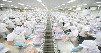 Đăng ký nhãn hiệu hàng hóa cho ngành thủy sản