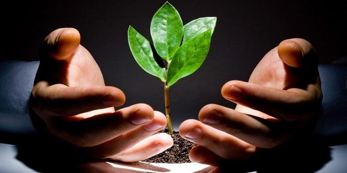 Quy định về ưu đãi đầu tư theo Luật Đầu tư