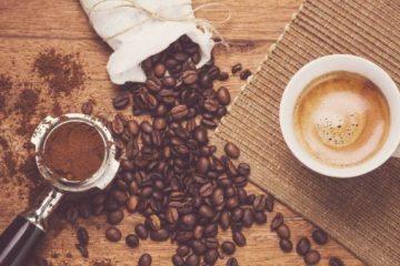 Công bố tiêu chuẩn chất lượng cà phê sầu riêng